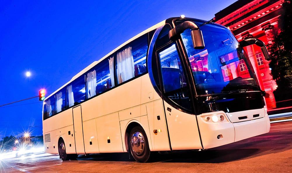 Spec Bus 1 - Bus and Coach Gas Struts