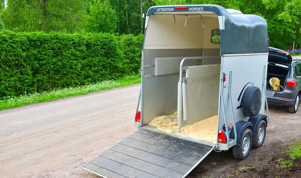 Spec Veh 1 - Caravan, Trailer and Motorhome Gas Struts